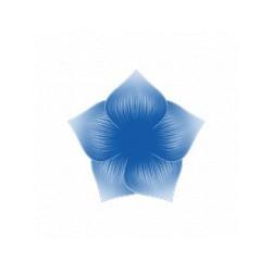 Peinture Bleue marine