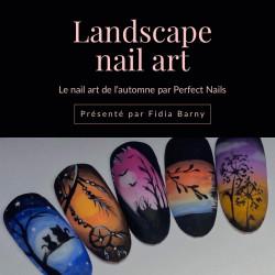 Landscape nail art online