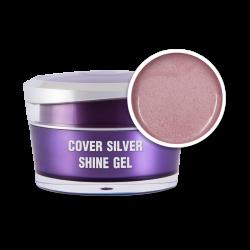 Cover Silver Shine